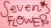 生花を扱わないお花屋さんセブンズフラワー