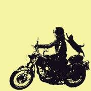 ☆そうだバイクにのろう☆