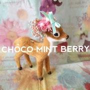CHOCO MINT BERRY