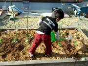 kyo-の庭造り日誌