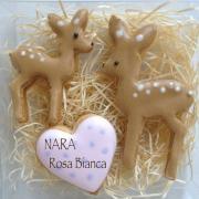 奈良県☆アイシングクッキー教室☆Rosa Bianca☆
