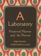 A Laboratory !!さんのプロフィール