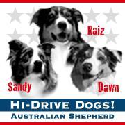 Hi-Drive Dogs!