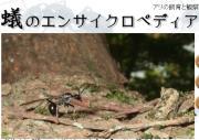 蟻のエンサイクロペディアLITE