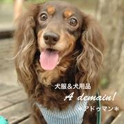 wanブランド☆A demain*アドゥマン*