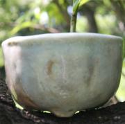 手にとってみる「観る鉢」小品陶器鉢