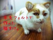 みぃすけぽんと猫と羊毛フェルト