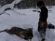 北海道狩猟・自然と共に
