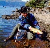 釣りに行けない鱒釣り師