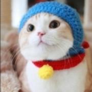 貴方を幸福にするFXブログ