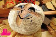 ルーンカフェ篠山のパンと陶芸工房だより