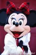 Disney だーいすき(^^♪