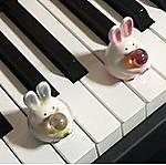 ピアノびより