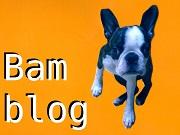 ボステリ・バムの東方犬聞録