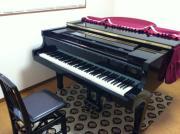 森ピアノ教室さんのプロフィール
