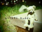 pocket buddy