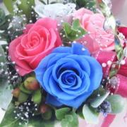 造花の魅力を追い求めて〜花ギフト・オルキス
