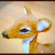バンビの目
