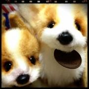INAKA!犬雑貨と動物雑貨♪