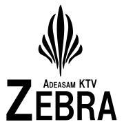 Zebra KTV 紹介ブログ