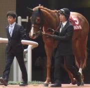 puni☆umiの競馬ブログ