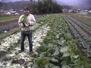 野菜作りは土作り!土壌微生物の力をお届け!