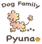 福井のペットショップ Pyuna(ピュナ)のブログ