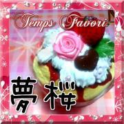 Sweets Deco(スイーツデコ)Temps Favori