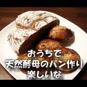 おうちで天然酵母のパン作り、楽しいな!