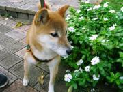 taekoさんのプロフィール