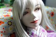 蒼居柚の人形日記