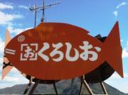 うりちゃんのブログ