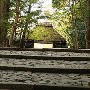 しっぽり京都