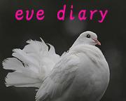 eve diary(四季の野鳥)