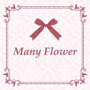Many Flowerさんのプロフィール