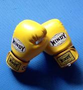 kick-boxing テツジム・飛竜(ドラゴン)blog
