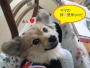 かずちゃんの笑顔満開ブログ