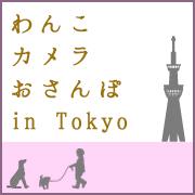 わんこ+カメラ+おさんぽ in tokyo