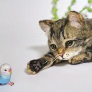 indoor life☆ 羊毛フェルトのある暮らし