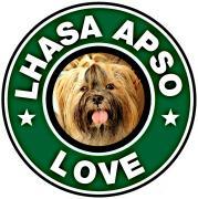 No Lhasa Apso, No Life