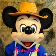 Disney and extra of the loves housewife Diary
