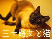 三十路女と猫