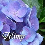 mimyさんのプロフィール