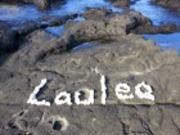 〜 Lauleaの風 〜  ハワイ島 ゲストハウス ラウレア
