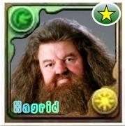 Hagridのバズドラ生物飼育日記