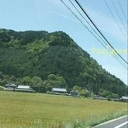 藤樹園のブログ