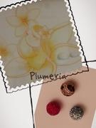 グルーデコ教室 Plumeria