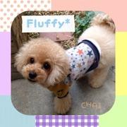 dog salon  Fluffy*