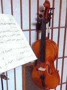 中年オヤジがバイオリンのお稽古に奮闘してみた