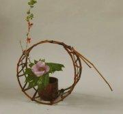 竹の籠そして山野草